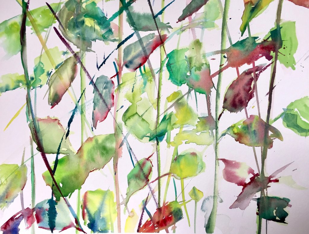 Winter Roses 8 Watercolour on Arches 640 gms 47x76