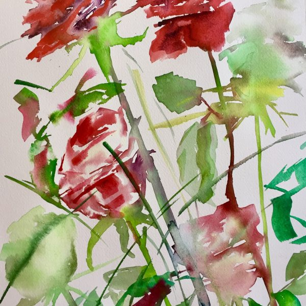 Winter Roses 9 Water colour 56x31