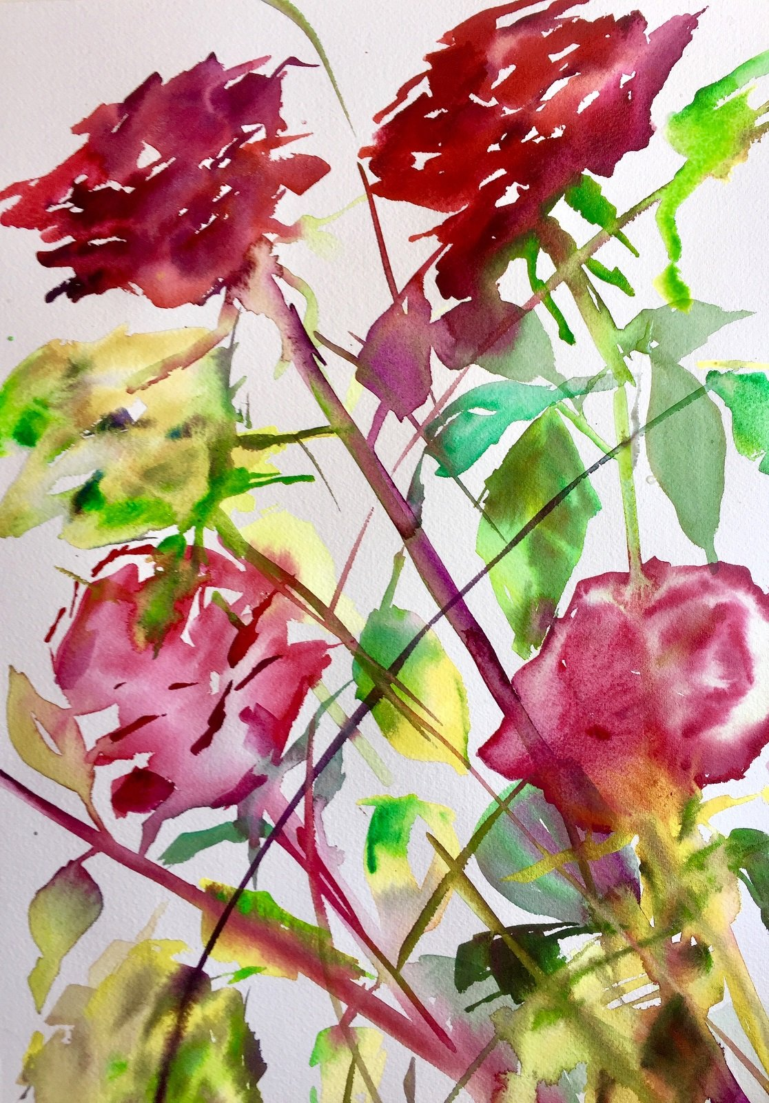 Winter Roses 3 Water colour 56 x 31 cm 300gms Arches