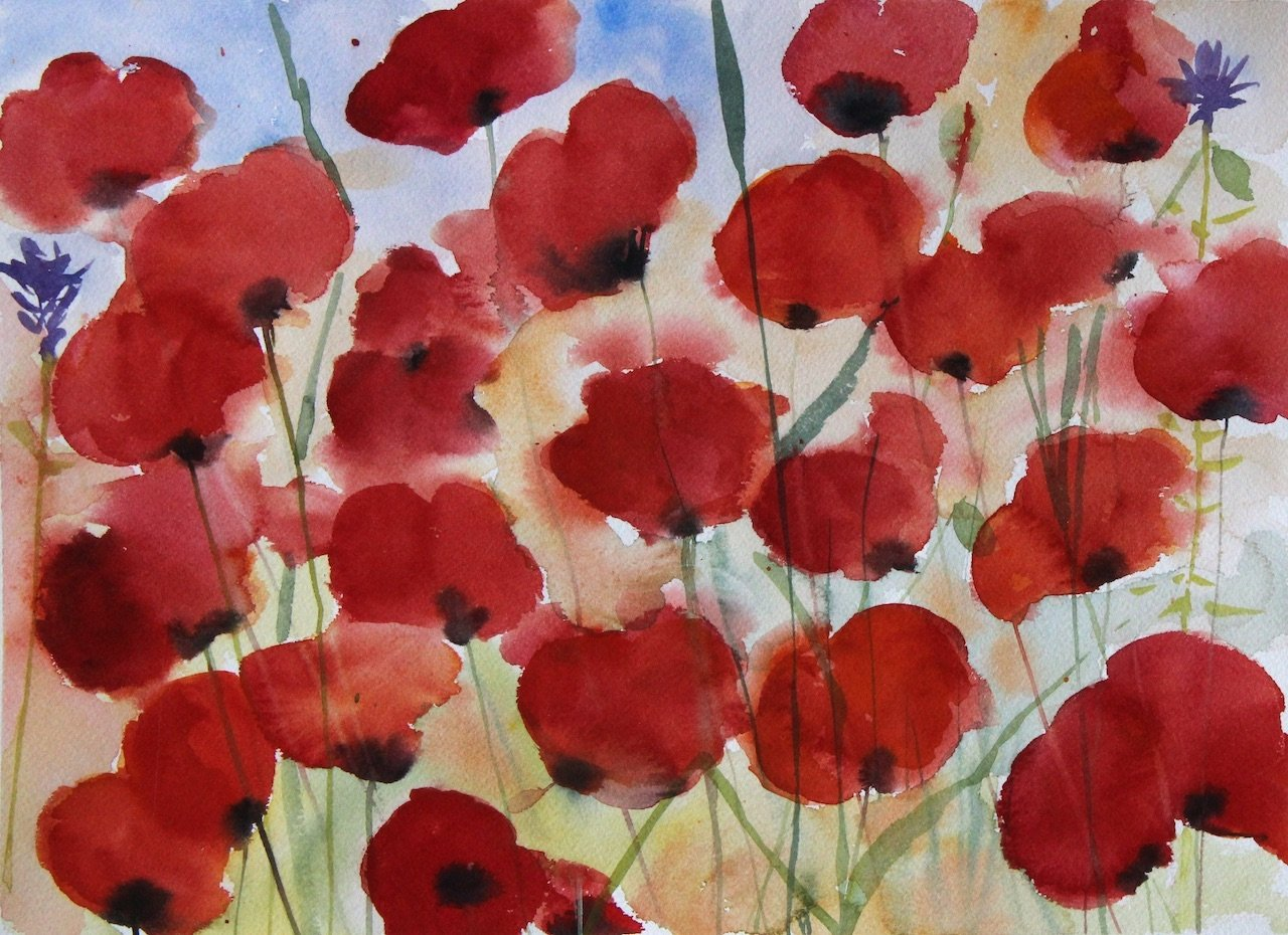 Coquelicots Saint Didiers<br />Water colour on Archers 300 gms<br />36 cm x 36 cm