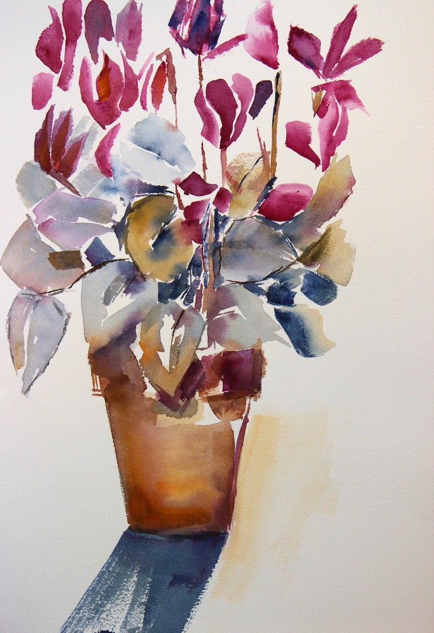 Cyclamen<br />Water colour on cm 300 gms Arches<br />46 cm x 36 cm