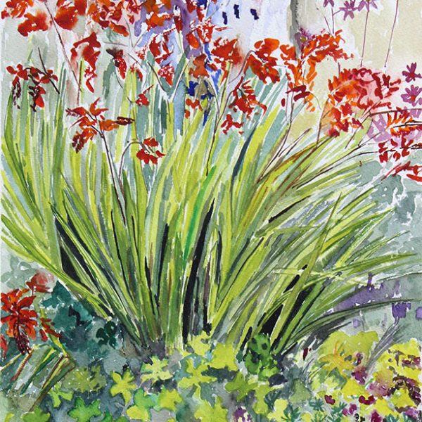 Ellies Garden Devon. 300 gms, 46x36