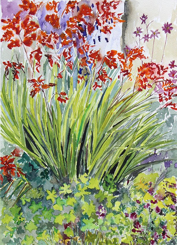 Ellies Garden, Devon<br />Watercolour on Arches 300 gms<br />47 cm x 36 cm