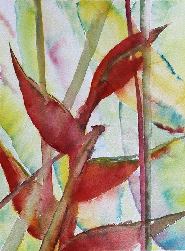 Fig Tree Drive Antigua<br />Water colour on 300 gms Arches<br />46 cm x 36 cm