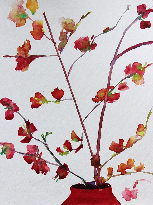 Japonica<br />Watercolour on Arches 300 gms<br />46 cm x 36 cm