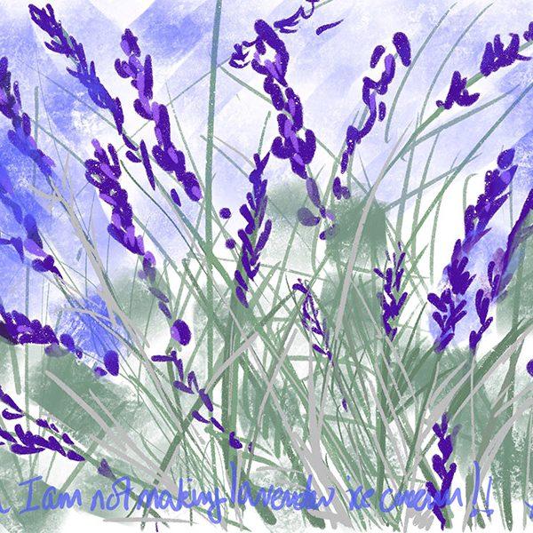 A bouquet of lavender